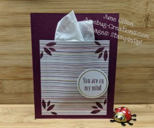 Junebug-Creations-Beary-Comforting-Paper-Pumpkin-Kit-alternate-with-kleenex-box-front-card