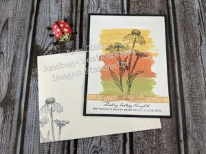 Nature's Harvest stamp set with water color card 1